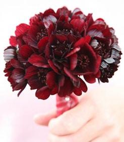 bouquet-mignion